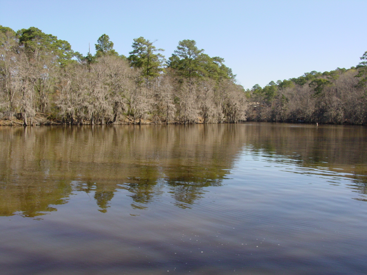 Low carb camping recipes camping capers for Caddo lake fishing